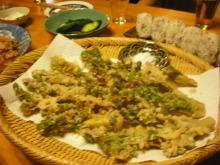 仙台のおいしいもの・宮城のおいしいものをご紹介-最上のおいしいタラの芽