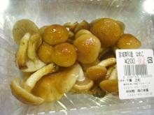 仙台のおいしいもの・宮城のおいしいものをご紹介-仙台のおいしいもの きのこ