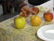 仙台のおいしいもの・宮城のおいしいものをご紹介-仙台宮城のおいしいもの 登米市 葉とらずりんご