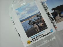 仙台のおいしいもの・宮城のおいしいものをご紹介-田代島 にゃん水 ネコの島