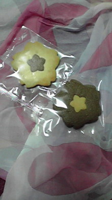 仙台のおいしいもの・宮城のおいしいものをご紹介-さくらクッキー
